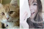 Khó nghĩ trước câu hỏi của cô người yêu đỏng đảnh: 'Giữa mèo và em, anh chọn ai?'
