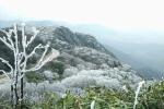 Miền Bắc rét đậm: Vùng núi cao dưới 5°C, nhiều nơi xuất hiện băng giá