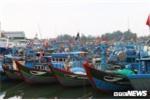 Đề nghị Trung Quốc bồi thường thiệt hại cho ngư dân Việt Nam bị xua đuổi, phun vòi rồng