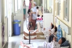 Video: Nghe bác sĩ kể chuyện 'chiến đấu' suốt 3 tuần cứu sống bé trai nguy kịch vì sốt xuất huyết