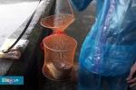 Video: Xem người dân giăng lưới, câu cá quanh kinh thành Huế sau mưa lớn