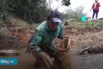 Dân Hà Tĩnh lội bùn bắt cá lóc trong cái lạnh thấu xương