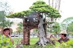 Chiêm ngưỡng vườn cây cảnh tiền tỷ ở Hải Phòng