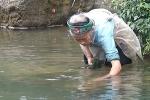 Cụ bà đi bộ 3km mỗi ngày để lấy rêu đá ở Hà Giang