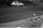 Clip: Chó bị bỏ rơi vẫn kiên trì chạy theo xe của chủ không chịu bỏ cuộc