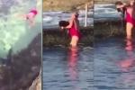 Video: Người phụ nữ tay không bắt cá mập