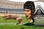Euro về làng: Petr Cech bị gọi về… bắt lợn