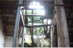 Mối mọt đục khoét kinh hoàng trong ngôi đình trên 1000 năm tuổi ở Hà Nội