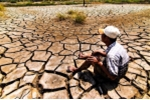 Mỗi năm đồng bằng sông Cửu Long mất 17 tỉ USD trong nông nghiệp?