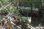Chuyện kỳ bí và khó lý giải về khu rừng bày người chết trên mặt đất ở Tây Nguyên