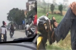 Triệu tập nhóm thanh niên lái xe máy bằng chân, làm 'xiếc' trên quốc lộ