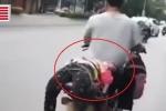 Clip: Con gái không chịu đi học, bị bố trói vào xe máy chở đến trường