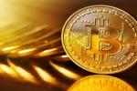 Gia Bitcoin hom nay 12/8: Bitcoin do san, nha dau tu do mat hinh anh 1