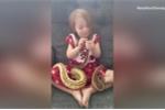 Bé gái 3 tuổi âu yếm vuốt ve đàn trăn
