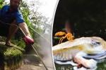 Video: Bí ẩn con sông tử thần sôi sùng sục, luộc chín mọi thứ ở Amazon