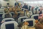 Hàng chục chim ưng đậu la liệt trong khoang hạng nhất máy bay