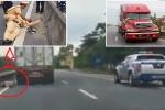 Chống người thi hành công vụ trên đường: CSGT được phép sử dụng mọi biện pháp ngăn chặn