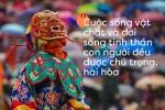 Ngày Quốc tế Hạnh phúc: Ghé thăm đất nước hạnh phúc nhất thế giới