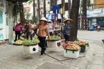 Vì lý do này, Hà Nội tính dẹp việc buôn bán trái cây trên vỉa hè