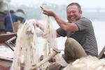 Theo chân nông dân Hưng Yên bắt cá mòi mùa sinh sản thu tiền triệu mỗi ngày