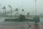 Áp thấp nhiệt đới đổ bộ đất liền: Dân các tỉnh Nam Trung Bộ phải biết thông tin này