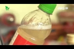 Cách phân biệt dấm tự nhiên và dấm pha hóa chất
