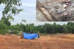Phát hiện huyệt mộ vợ vua Tự Đức bị đào xới làm bãi đậu xe