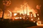 Video: Bố hát trấn an con gái khi băng qua biển lửa cháy rừng ở Mỹ
