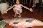 Chuyên gia săn cá khủng Hồ Tây và chuyện bắt trắm đen 2,5 tạ ở Việt Trì