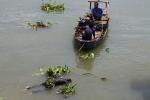 Bắt giữ người đàn ông ghen tuông giết vợ vứt xác xuống sông