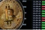 Giá Bitcoin hôm nay 7/4: Tiền ảo lao dốc, cú sốc với nhà đầu tư Bitcoin
