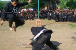 Hai võ sỹ MMA bị fan bóng đá đánh chết tại Indonesia