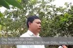 Video: Tìm ra nguyên nhân gà Đông Tảo chân 'khủng' chết hàng loạt
