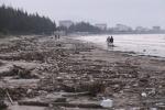 Ảnh: 5km bờ biển Đà Nẵng tràn ngập gần trăm tấn rác