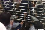 Video:  'Thượng đế' chui cửa, giành giật mua hàng hiệu giảm giá ngày Black Friday ở Hà Nội
