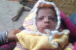 Bị khỉ cắp đi lúc bú mẹ, bé trai 12 ngày tuổi ở Ấn Độ chết thương tâm