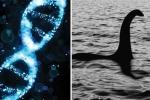 'Huyền thoại' quái vật hồ Loch Ness sẽ được các nhà khoa học kiểm chứng bằng DNA