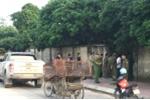 Bắt giữ đàn chó cắn chết bé trai 7 tuổi ở Hưng Yên