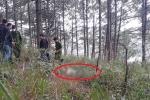 Phát hiện thi thể người đàn ông cạnh chai thuốc trừ sâu trên đồi thông