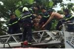 Giải cứu thanh niên ngáo đá nhảy múa trên sân thượng nhà dân ở Đồng Nai