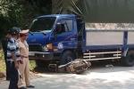 Tông trực diện xe tải, tài xế xe máy chết tại chỗ ở Lào Cai