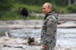 Video: Gặp gấu khi đi câu, ông Putin phản ứng thế nào?