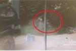 Clip: Người đàn ông thoát chết trong gang tấc khi bị chiếc xe tải đâm thẳng vào người