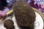 Mổ lợn, phát hiện 2 vật thể lạ nghi 'cát lợn' ở Hải Dương