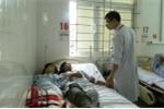 4 người trong một gia đình nhập viện khẩn cấp vì... ăn nấm rừng