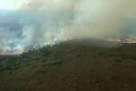 Thảm họa cháy rừng Amazon nguy hiểm đến mức nào?