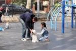 Video: Chỉ bằng 1 con chó cảnh, bé gái đang chơi cạnh mẹ bị dụ dỗ theo người lạ