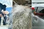 Clip: Trung Quốc lạnh khủng khiếp, quần áo hóa đá, nước vừa chảy ra đã đóng băng