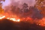 Video: Hơn 15 ha rừng phòng hộ ở Quảng Bình cháy suốt 10 tiếng