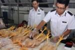 Hội nghị triển khai hàng loạt văn bản về an toàn thực phẩm tại Hà Giang